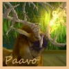 Paavo's picture